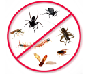 residential pest control service, centipede virginia bed bugs, insects, spider problems, home pest control, virginia, arlington, alexandria, springfield, pest removal, woodbridge, manassas, centerville,